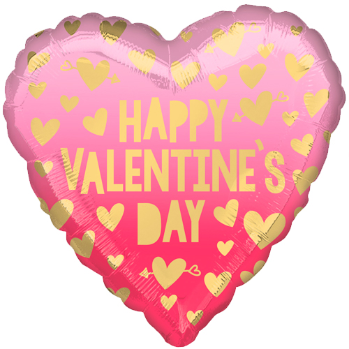 happy valentine's day roze ombr�